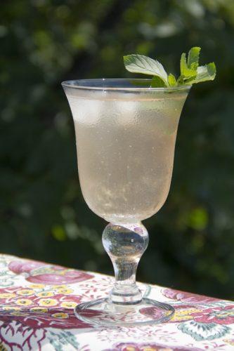 Rhubarb Ginger Splash