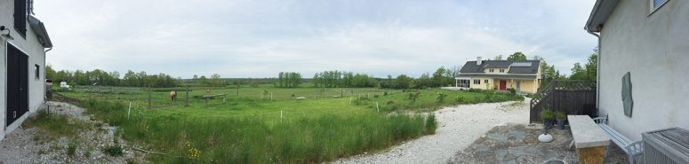Avonlea, Luella's Connemara horse farm in Rute.