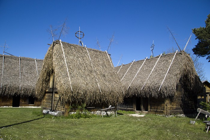 bunge_ThatchedBuildings_MG_4292