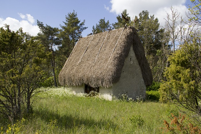 rute_ThatchedBuilding_MG_4484