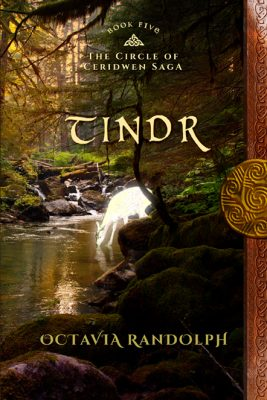 Tindr Book Cover