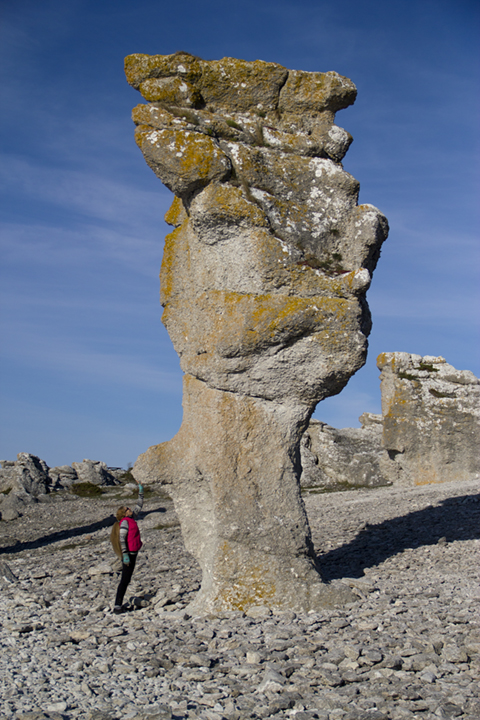 "That's me reaching up to touch the ""nose"" of this rauk at Langhammars on the West Coast of Fårö."