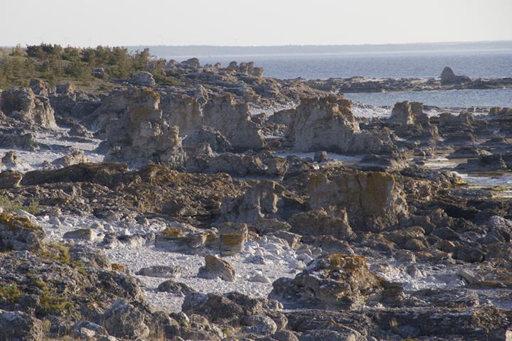 Unearthly seascape, Fårö.