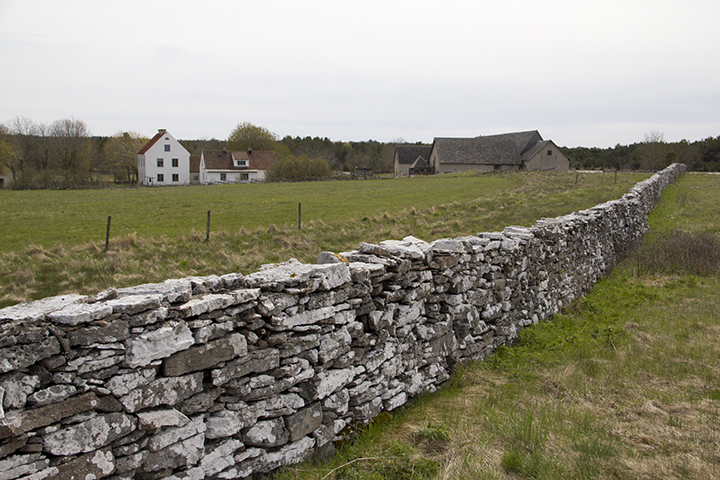 Hau Farm Stone Wall